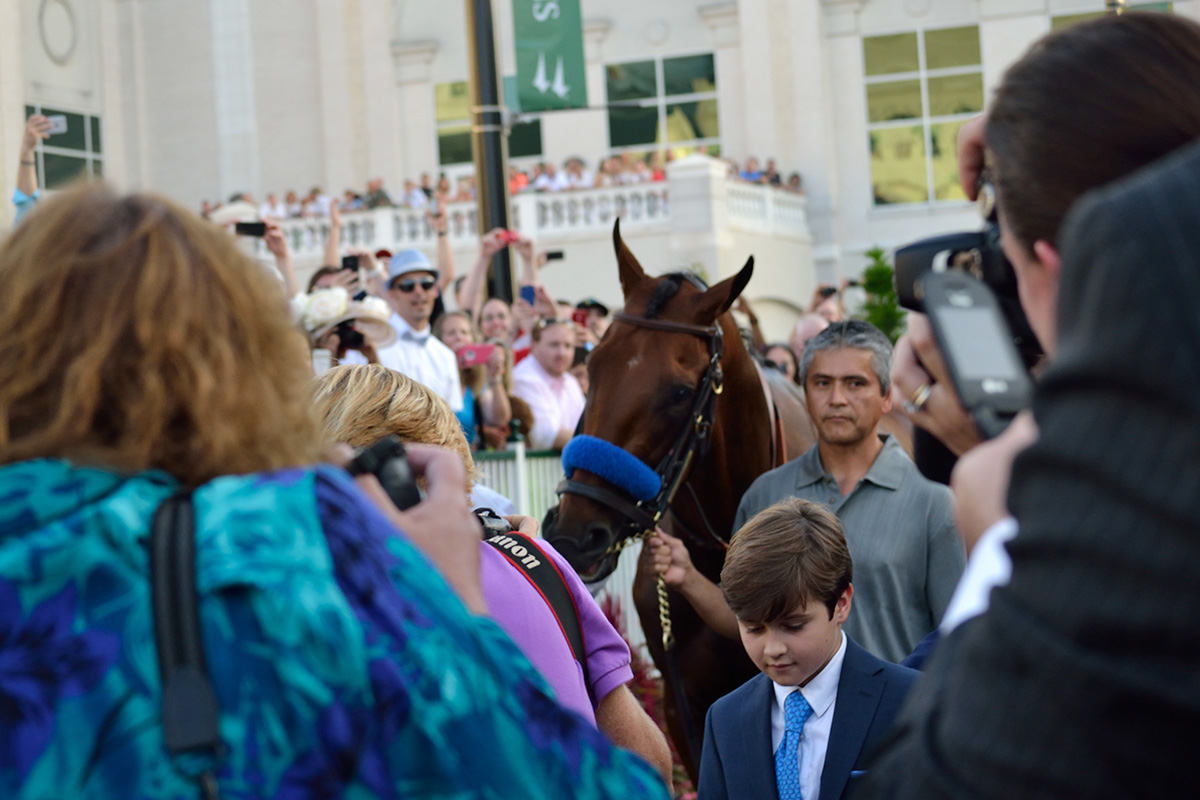 American Pharaoh parades in the Churchill Downs paddock