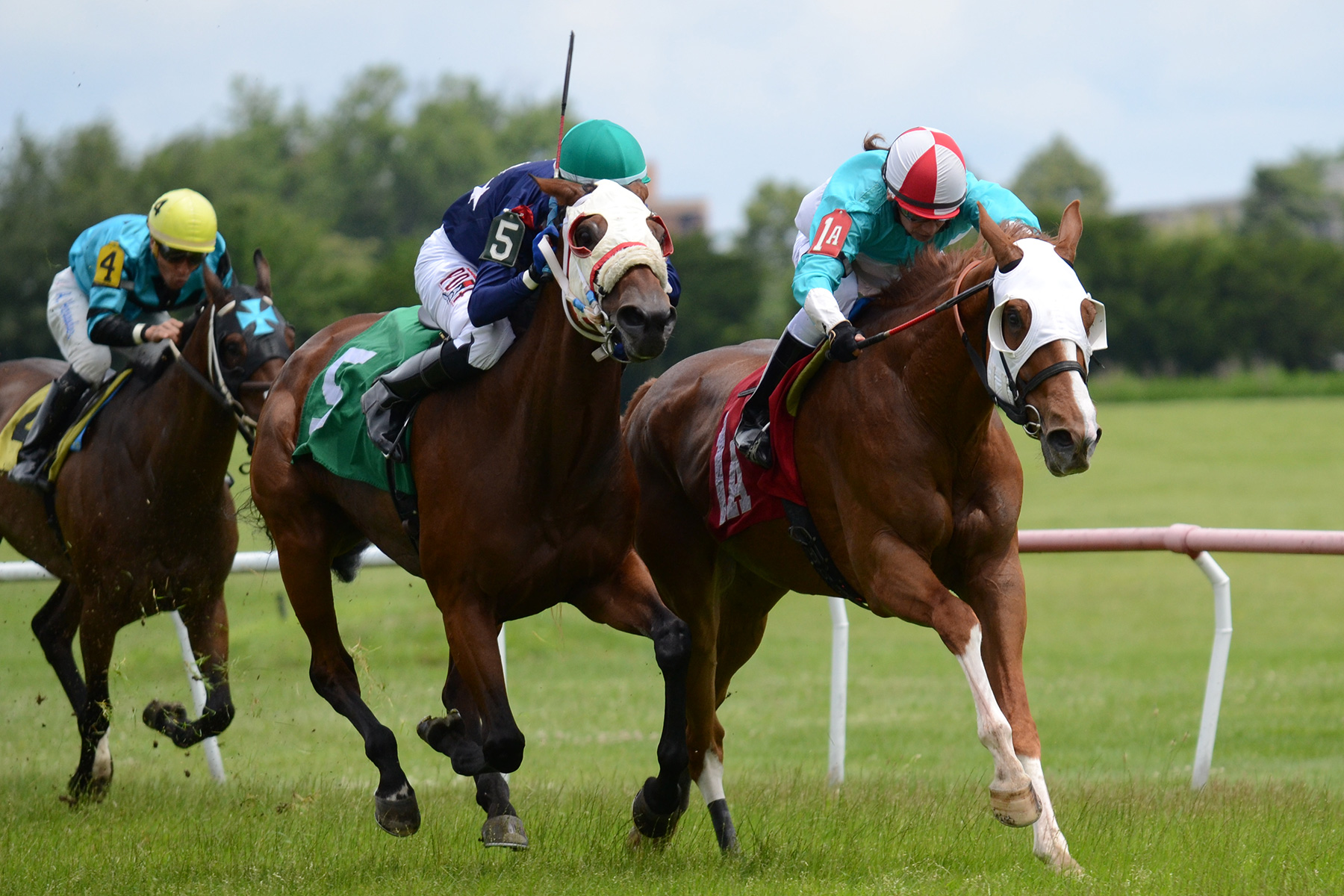 Saint Alfred and Desert Dotty go head to head in the stretch of the Thomas F. Moran Stakes for Massachusetts-breds on July 30