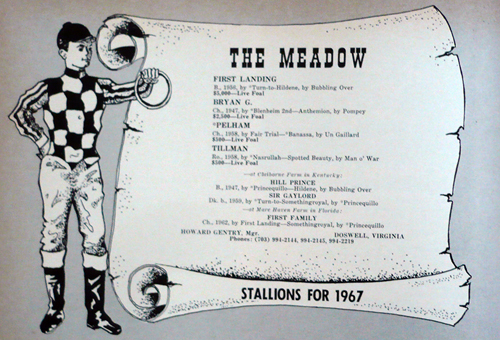 Ad for the Meadow from 1966