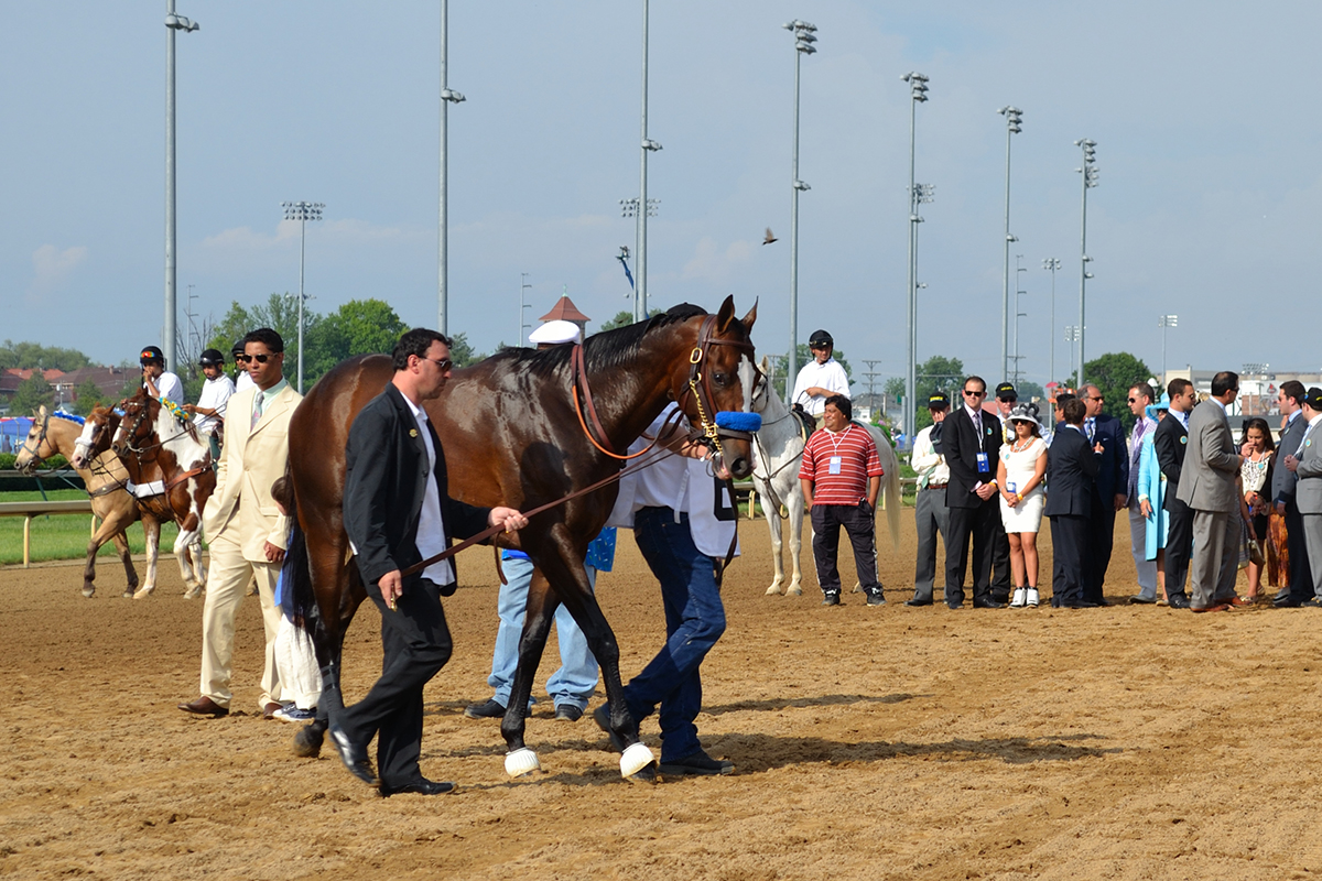 Bodemeister before the 2012 Kentucky Derby