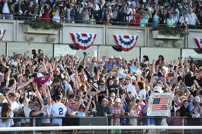 The crowd at Belmont Park after American Pharoah wins the 2015 Belmont Stakes and becomes the 12th Triple Crown winner