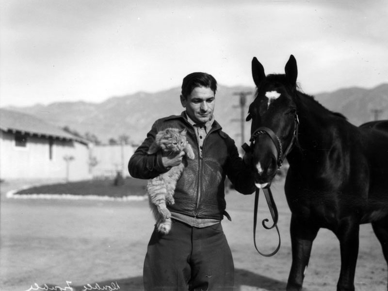 View of a beautiful black horse, identified as Double Trouble, and a man that may possibly be a trainer or handler; the man holds the horse's rein with his left hand, and is holding a large, fluffy cat next to his chest with his right hand